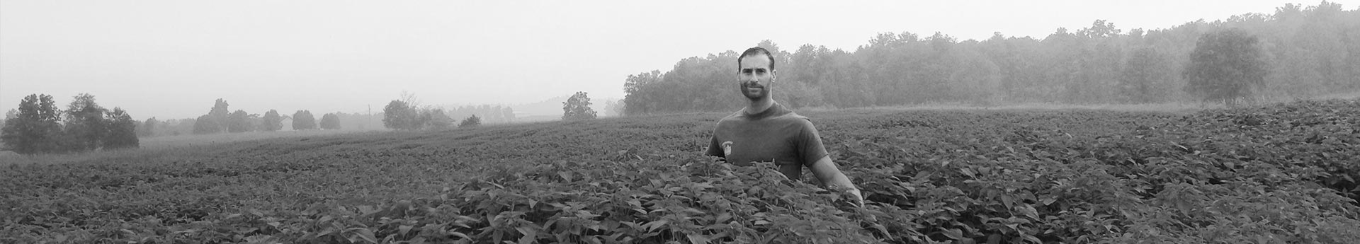John of Roundstone Native Seed in Upton, Kentucky. Trusted botanical supplier.