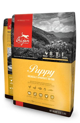 Orijen Puppy Biologically Appropriate Dog Food Bag