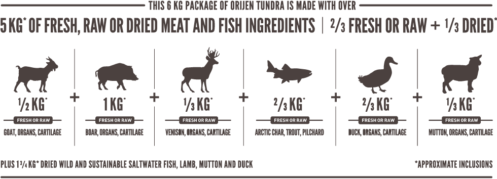 ORIJEN Tundra Meatmath Formula and Dog Food Ingredients
